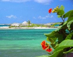 island babymoon