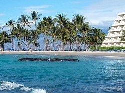 Hawaii Babymoon at the Mauna Lani Bay Hotel