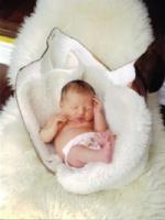bellycast cradle